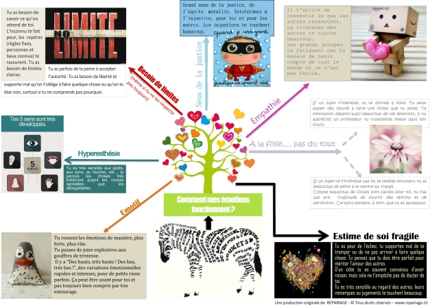 (Microsoft Word - Infographie HP-351motions.docx)